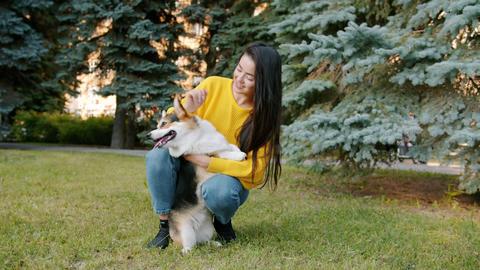 Joyful student caressing welsh corgi doggy in park on lawn stroking animal Archivo
