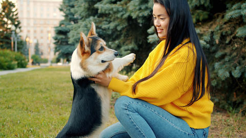 Young Asian lady playing with beautiful corgi puppy in park hugging animal Archivo