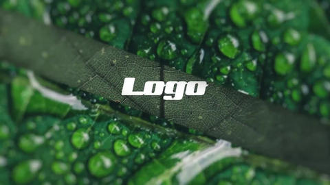 Logo - Photo Intro After Effects Template