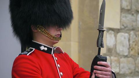 Closeup portrait of a British Guard, slow motion Live Action