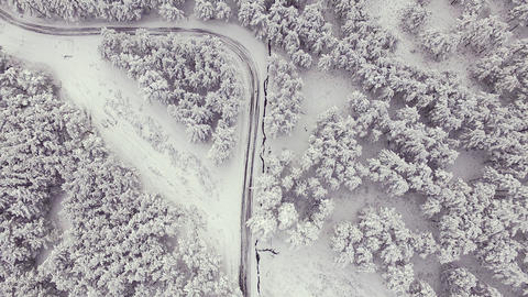 Country road in snowy forest on winter time, aerial view from drone. Scenic Live Action