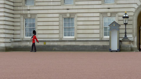 British Guard on duty at London Buckingham Palace Live Action