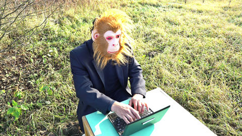 man in suit and chimpanzee monkey mask sitting with laptop compute in the yard Live Action