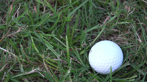 Golf Ball Close Up Live Action