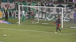 Soccer Goalie Kicks Ball Footage