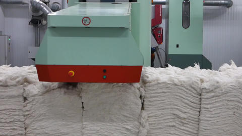 Carding machine in textile factory Live Action