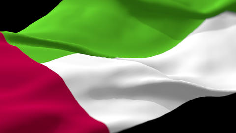 Flag of United Arab Emirates Loop Alpha Live Action