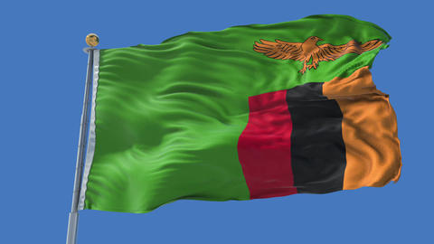 Zambia animated flag pack in 3D and isolated background Animation