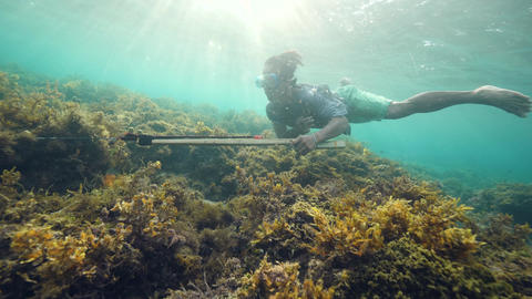Underwater shot of a spearfisher man holding a speargun and swimming underwater Live Action
