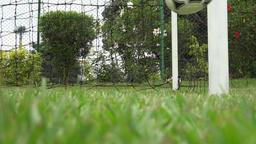 Soccer Ball, Futbol, Footy, Sports Footage