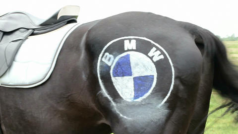 Horse with saddle and BMW logo Live Action
