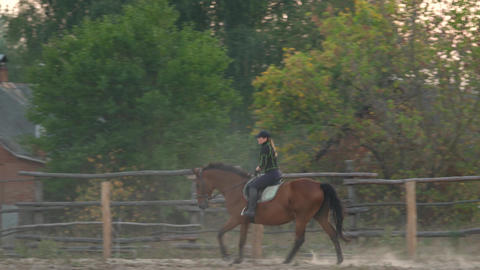 Horsegirl rides gallop on a brown horse in the outdoors sand arena. Competitive Live Action