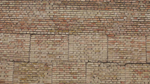 Brick wall background. A large wall of bricks Live Action