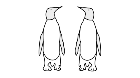 Penguin Line Drawing Animation Transparent Background Vector Motion Graphics Loop CG動画