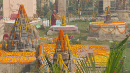Monk decorating structures with flower petals,BodhGaya,Mahabodhi Temple,India Footage