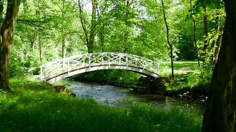 Romantic bridge over river in forest. Europe, Germany Footage