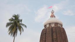 Spine of Jagannatha hindu temple,Puri,India Footage