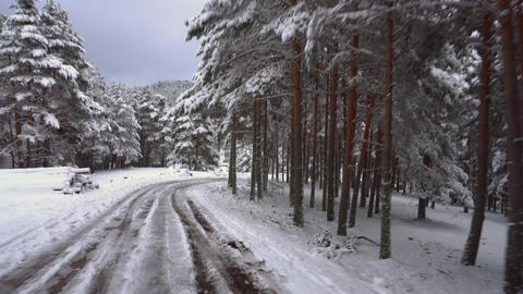 Driving on snow covered mountain forest road. Pov steady cam footage of driving Live Action