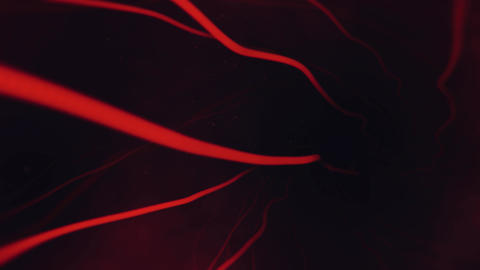 Rotating Curvy Red Veins Tunnel with Subtle Particles CG動画