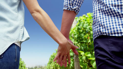 Mid section of couple standing with hand in hand in vineyard Live Action