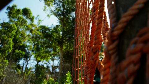 Determined women climbing a net during obstacle course Live Action