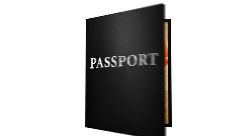 Passport Travel Stock Video Footage