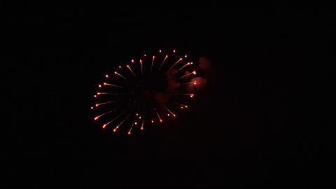 firework 03 Stock Video Footage