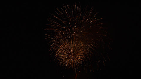 firework 07 Stock Video Footage