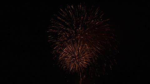 firework 07 Footage