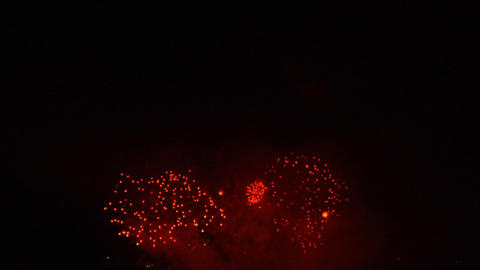 firework 14 Stock Video Footage