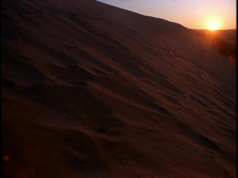 The golden hour sun hangs over large sand dunes in a desert Stock Video Footage