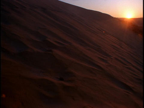 The golden hour sun hangs over large sand dunes in a desert Footage