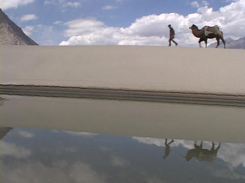 A man leads his camel past a desert oasis Stock Video Footage