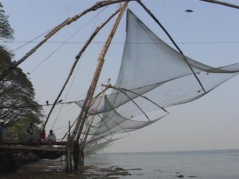 Fishing nets hang along the coast in Kerala, India Footage