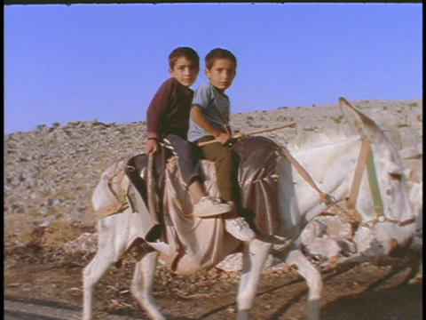 Young Arab boys ride on a donkey Stock Video Footage