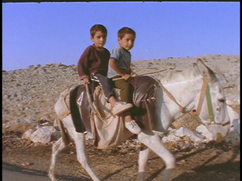 Young Arab boys ride on a donkey Footage