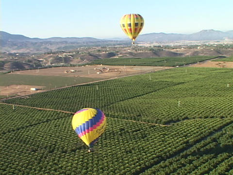 Hot air balloons fly over vineyards and wineries Stock Video Footage
