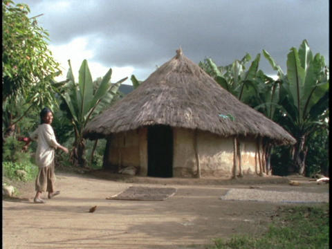 A family of Africans walk toward a thatch roofed hut Stock Video Footage