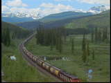 A freight train travels through the Canadian Rockies Footage