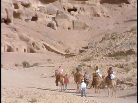People ride on camels to ruins in Petra, Jordan Footage