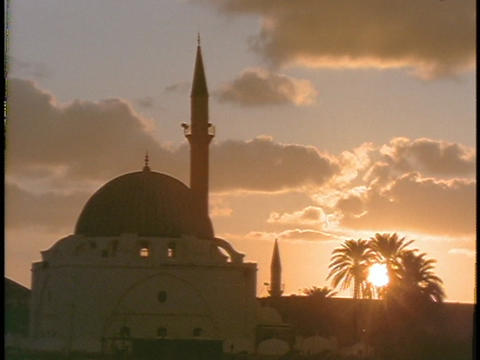 A mosque stands beside some palm trees Footage