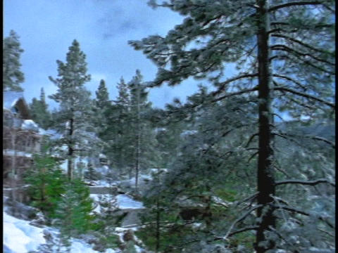 A mansion hides in the forest beside Lake Tahoe Stock Video Footage