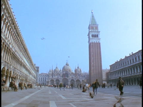 Pigeons fly around St. Mark's Square in Venice, Italy Live Action