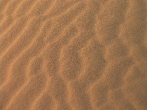 The wind blows sand over a Sahara sand dune Stock Video Footage