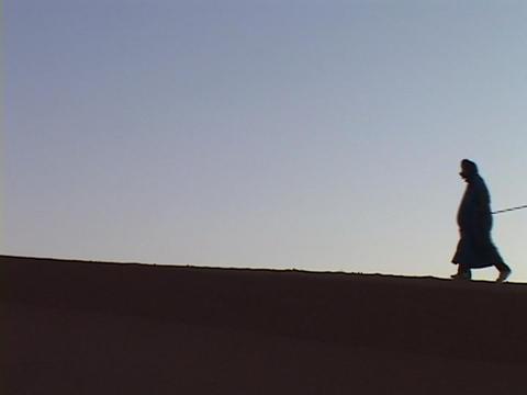 Men lead camels across a desert Stock Video Footage