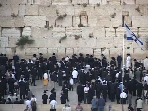 Orthodox Jews pray at the Wailing Wall in the Old City, Jerusalem Footage
