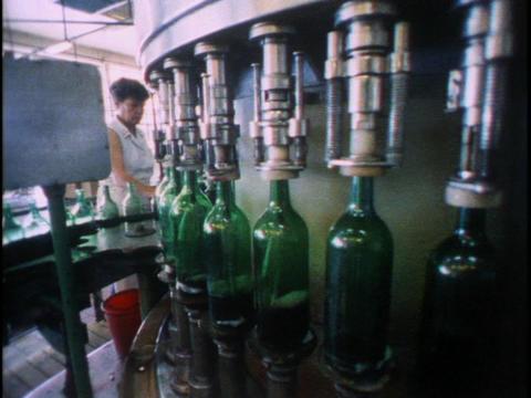 Women work in a bottle factory in the Czech Republic Footage