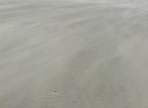 Sand blows rapidly across the ground Stock Video Footage