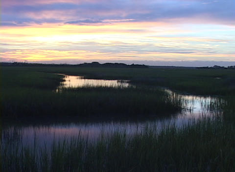 A colorful sky is reflected in marsh water Stock Video Footage