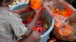 Boy preparing cut mango's,Ahmedabad,India Footage